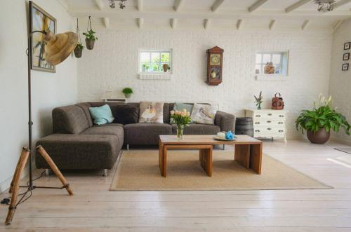 living-room-indoor-plants-1024x677-1